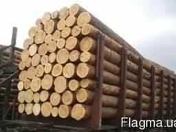 Продажа леса по Украине и на экспорт сосна