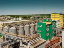 Продажа масло экстракционного завода