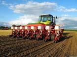 Продажа семян подсолнечника и кукурузы Тунка, Брио, Мегасан,
