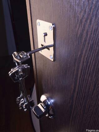 Продажа входных металлических дверей.