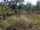 Продажа земельного участка 10 сот. в г.Алушта, с.Малый Маяк - фото 2