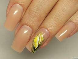 Профессиональные курсы по наращиванию ногтей