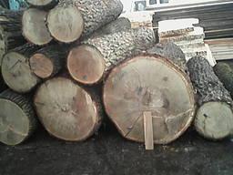 Производство дубовой доски, ширина 110-280мм