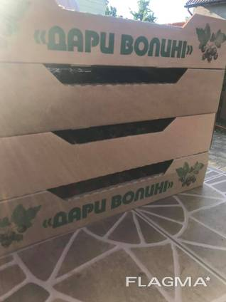 Пропонуємо послуги механізованого збору ягід, продаж комбайну ягідного