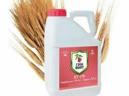 Протравитель семян Гринфорт КТ 170 (Украгроком)