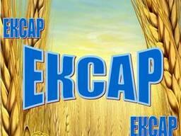 Пшеница 3-6 кл. клейковина 19-16%