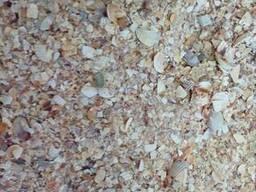 Ракушка морская (морской песок)