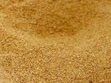 Ракушка кормовая, Мука известняковая, Монокальций, Сода, Соль, Шрот соевый, Трикальций кор - фото 8