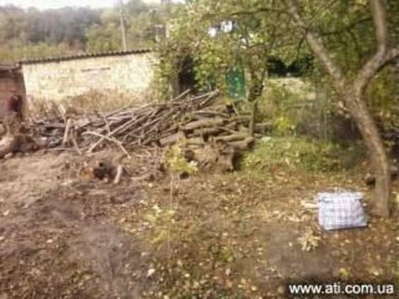 Расчистка территорий Киев