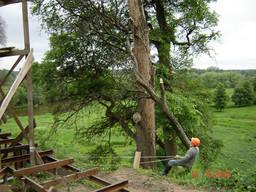 Спил деревьев удаление деревьев, вырубка деревьев