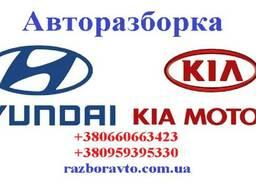 Разборка Киа и Хундай в Донецке