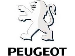 Разборка Пежо Peugeot 607, 806, 807, Boxer, Expert, J5