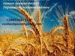 Размещение объявлений на Топ досках Украины бонус