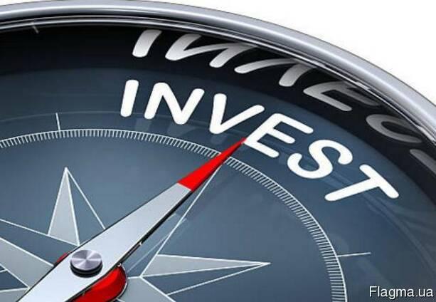 Услуги профессионального бизнес планирования для получения и
