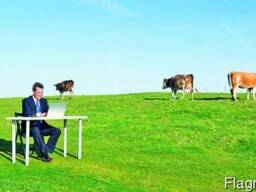 Разработка стратегии выхода на сельскохозяйственный рынок