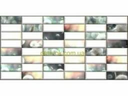 Регул ПВХ мозайка стеновая панель одуванчик 173 0