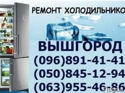 Ремонт холодильника Занусси, Канди, Мили, Вышгород
