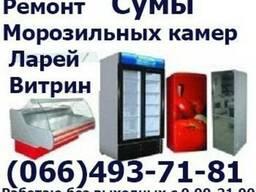 Ремонт морозильных камер Сумы. Ремонт морозильной камеры