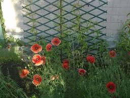 Решетка садовая