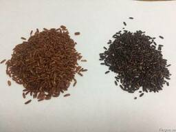 Рис Дикий нешлифованный чёрный, красный и Браун