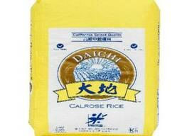 Рис Daichi, 22, 68 кг, США
