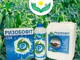Ризобофіт - Препарат бульбочкових бактерій бобових культур