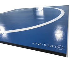 Борцовский ковер для дома 3м х 3м , 50 мм , РОЛЛ-маты