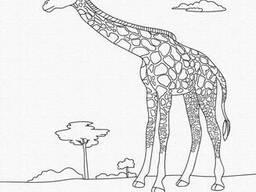 "Роспись на холсте. Art Craft ""Жираф"" 25х30 см (15522-AC)"
