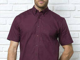 Сорочка мужская с коротким рукавом jhk shrl ss pop