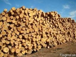 Продам круглый лес D 15-19-24-36 cосна. Рудстойка, долготье.