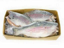 Рыба красная форель размер 3-4 кг