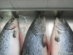 Рыба мороженная копченая вяленая морепродукты