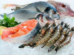 Рыба свежемороженая оптом