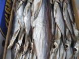 Рыба вяленая - фото 5