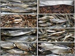 Рыба вяленая, свежемороженая