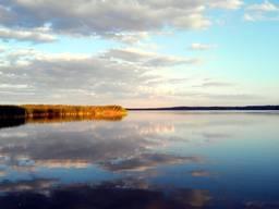 Рыбхоз 1136. 78 Га Киевская область