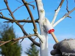Садовая краска для деревьев от зайцев и грызунов - фото 2