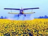 Самолет Ан-2 для авиаобработки подсолнечника и кукурузы - фото 1