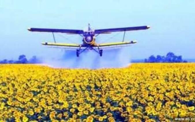 Самолет Ан-2 для авиаобработки подсолнечника и кукурузы