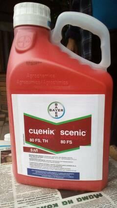 Сценік® - ефективний протруйник насіння пшениці та ячменю.