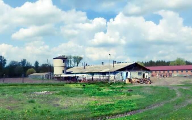 Сдается в аренду сельско-хозяйственный комплекс в Краснолим