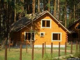 Сдается дом в сосновом лесу
