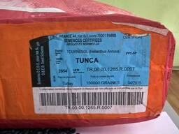 Семена гибрид подсолнечника Тунка (Лимагрейн) - фото 3