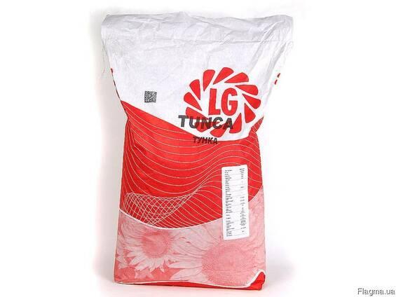 Семена подсолнечника LG 5663CL