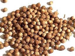 Семена Кориандр (Кинза) 1кг
