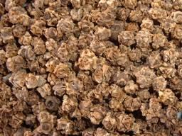 Семена кормовой свеклы - фото 2