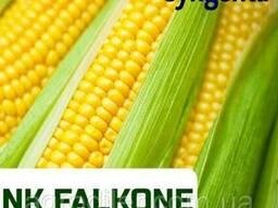 """Семена кукурудзы """"НК Фалькон"""" ФАО 220"""
