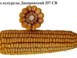 Семена кукурузы Дніпровскій 257 СВ. цена16грн/кг.