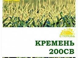 Семена кукурузы Кремень ФАО 210 Степова
