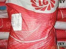 Семена кукурузы Лг30254